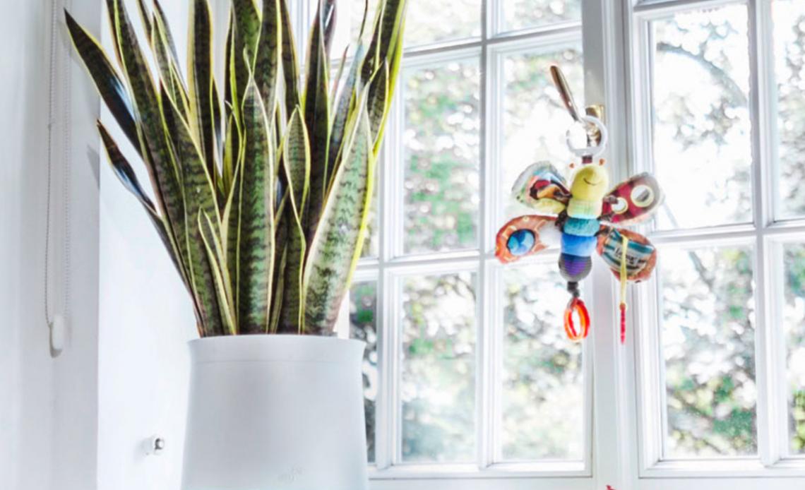purificatore d'aria con vaso di fiori per bambini