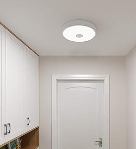 Yeelight Ceiling Light Mini