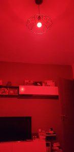 Kit Alexa Avidsen - lampadina rgb - rosso