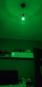 Kit Alexa Avidsen - lampadina rgb - verde