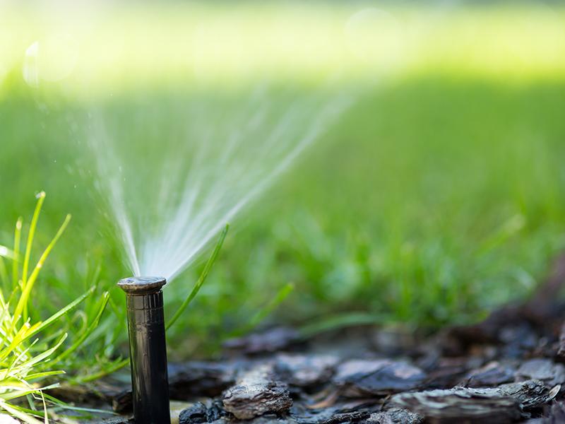 Un sistema di irrigazione