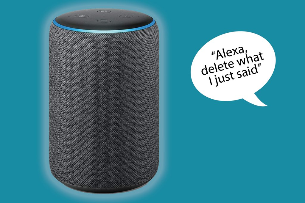 eliminare le registrazioni su Alexa con la voce